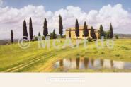 Tuscan Hillside #5