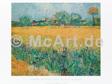 Vista di Arles con irises