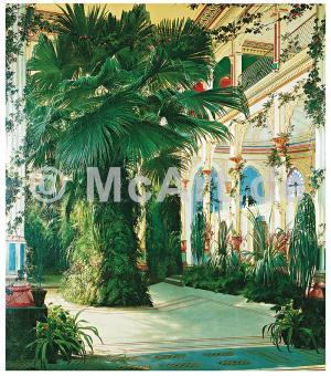 Interior of a Palm House