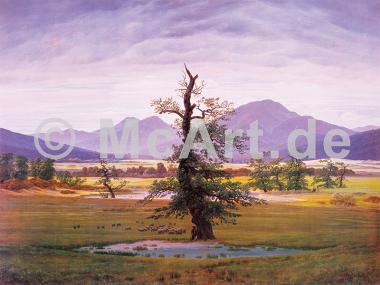 Der einsame Baum -