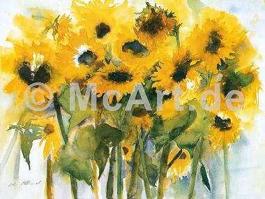 Sonnenblumenfeld -