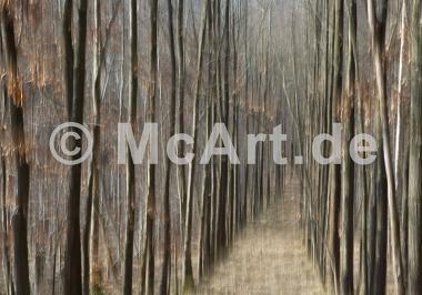 Waldschneise -