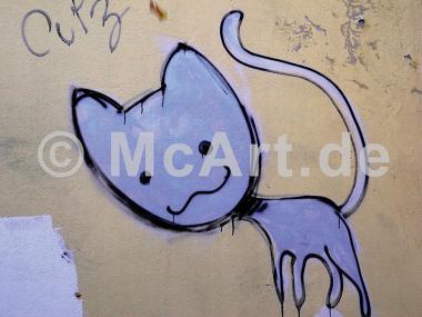 Katze 1 -