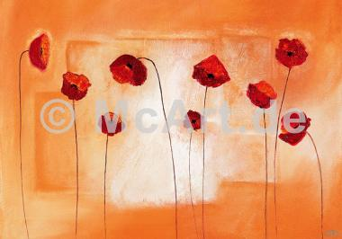 Poppy Meeting -