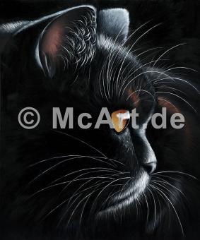 Black Tiger -