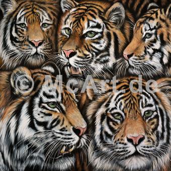Tigermix -