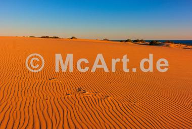Myall Lakes Dunes -