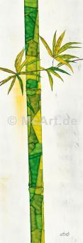 Bambus Duo I -