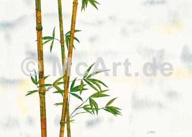 Bambus -
