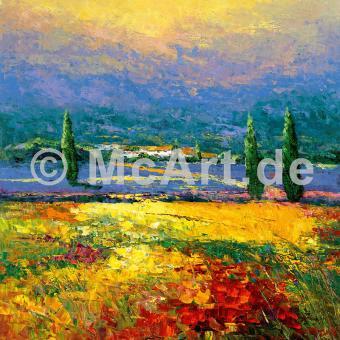 Provence II -