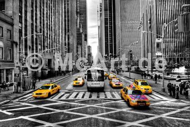 Yellows -