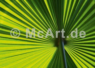 Leaf 1 -