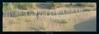Dune de Carteret