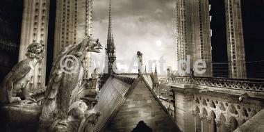 Paris-Gargouilles de Notre Dame