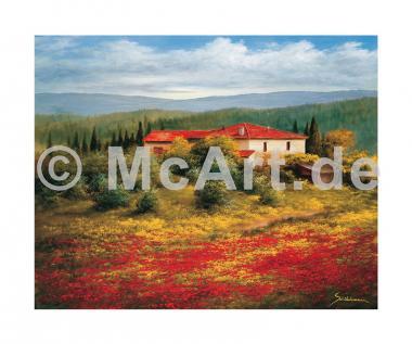 Landschaft mit Mohn II
