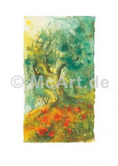 Oliven und Mohn